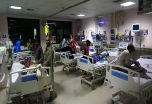 लिची से मिला सुबे में 'चमकी बुखार' को बढ़ावा, अबतक 146 बच्चों की मौत