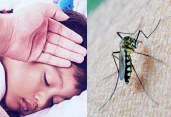 बिहार में डेंगू का खौफ बरकरार, मच्छर भगाने वाले उत्पादों की बढ़ी बिक्री